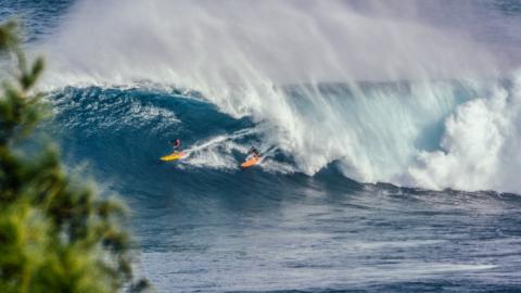 Die SurfSpots von Noosa in Australien: ein Geheimtipp?