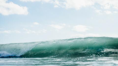SurfSpots in Byron Bay: Das solltest du dort nicht verpassen