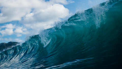 Die perfekte Welle