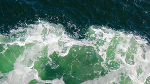 Beobachtung – Eine wichtige Gabe für Surfer