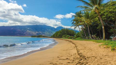 Das Surfen auf Hawaii