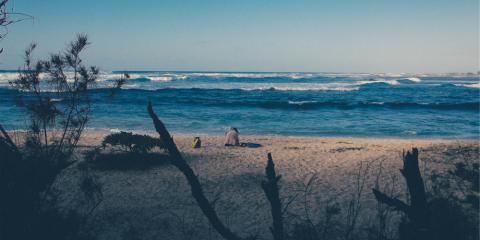 Surfen auf den kapverdischen Inseln