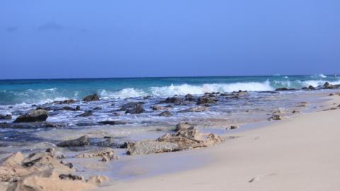Was dich im Surfcamp auf Fuerteventura erwartet