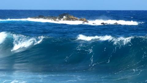 Surfen auf Oahu Hawaii