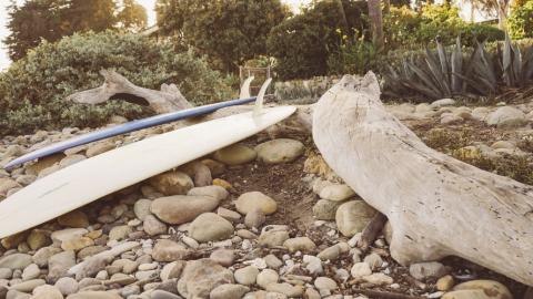 Single-Fin Surfboards