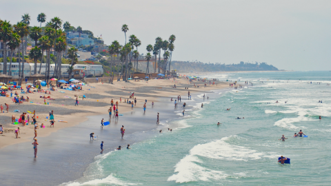 Best Places to Learn Surfing in California