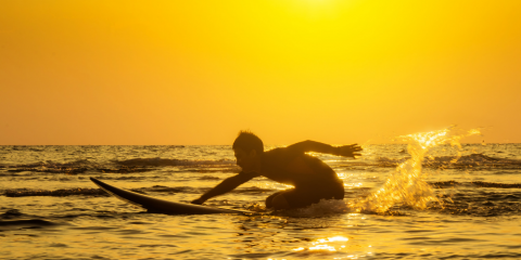 Summer Surf Equipment 2019